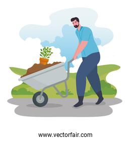 Gardening man with wheelbarrow and plant vector design