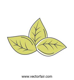 ecology leaves nature environment line and fill