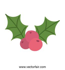 merry christmas, holly berry leaves decoration celebration, isolated design