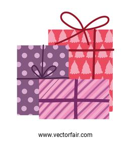 merry christmas, collection gift boxes decoration isolated design