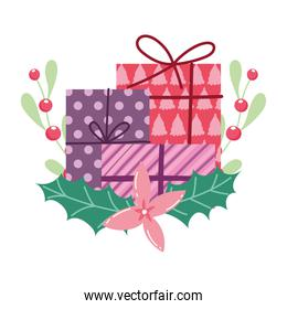 merry christmas, gift boxes flower holly berry cartoon, isolated design