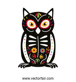exotic mexican owl bird flat style icon