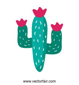 cactus mexican plant flat style icon