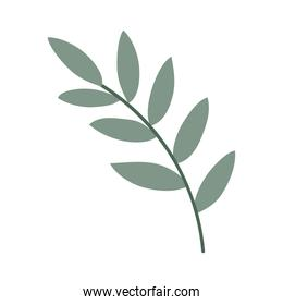 branch with leafs flat style icon