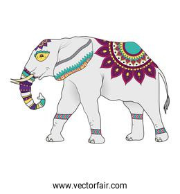 elephant with mandalas animal icon