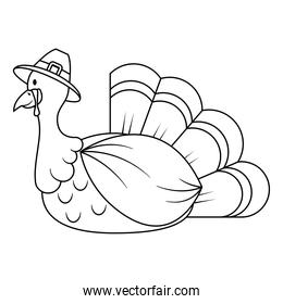 thanksgiving turkey wearing pilgrim hat character