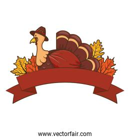thanksgiving turkey wearing pilgrim hat with leafs and ribbon frame