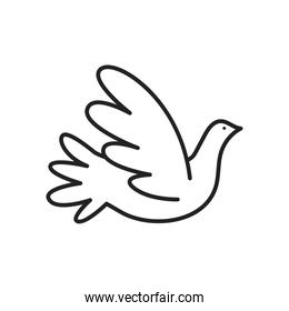 dove line style icon vector design