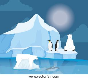 iceberg block arctic night scene with penguins and polar bear