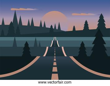 landscape of street with moon and pine trees vector design