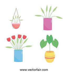 icon set of beautiful plants in a pot, colorful design