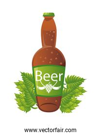 beer bottle drink with leafs plant