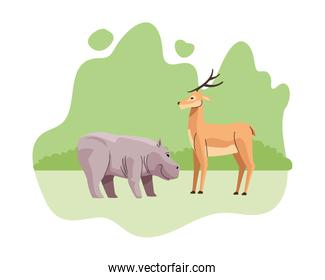 wild hippopotamus and reindeer animals nature icons