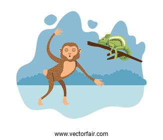wild chameleon and monkey natural icon