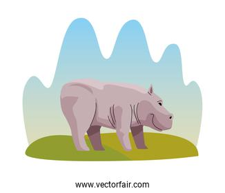 wild hippopotamus animal nature icon