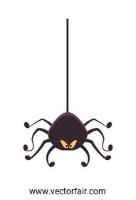 halloween spider hanging isolated icon