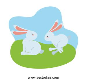 cute little rabbits easter animals seated and jumping in the camp