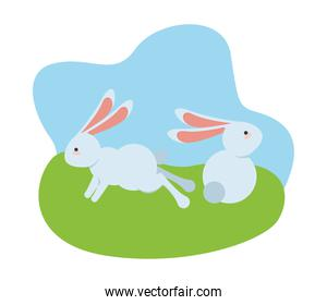 cute little rabbits easter animals seated and jumping in the camp scene