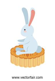 cute little rabbit easter animal seated in lace