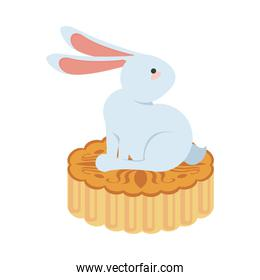little rabbit easter animal seated in lace