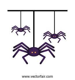 halloween spiders hanging isolated icon