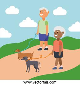 interracial old couple walking with dogs active seniors characters