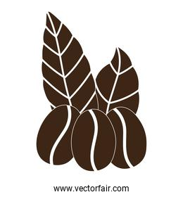 coffee grains leaves organic nature silhouette icon style