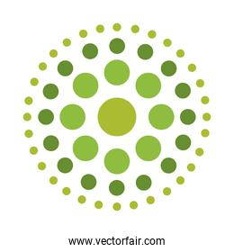 green dotted shaped circle isolated white background