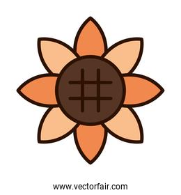 sunflower flower nature decoration line fill icon