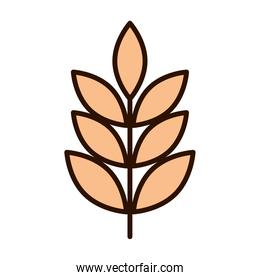 wheat cereal nature branch line fill icon