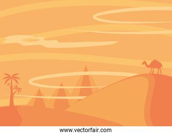 landscape arid desert with camel palms and pyramids