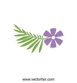 tropical leaf and flower icon, flat style
