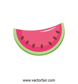 watermelon fruit icon, flat style