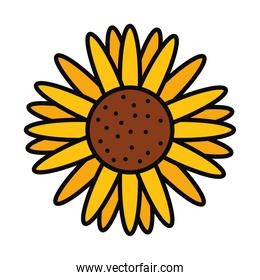sunflower icon image, line and fill style