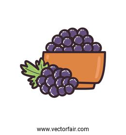 grapes fruit bowl line and fill style icon vector design