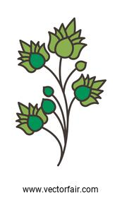 branch with leafs plant icon isolated