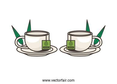 teacups drink in dishes with leafs plant