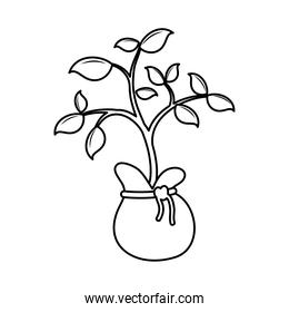 flower growth plant in bag line style icon