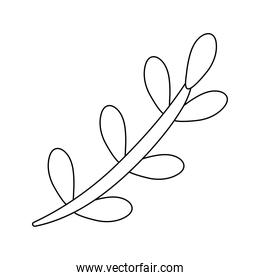 branch with leafs nature line style isolated icon