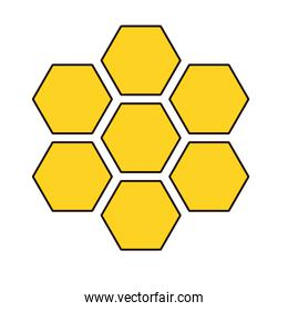 forms of honey sweet isolated icon
