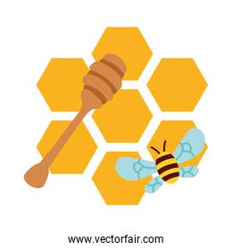 forms of honey sweet with bee flying