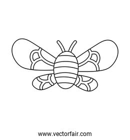 bee insect flying isolated icon