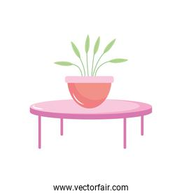 isolated potted plant on round table decoration interior