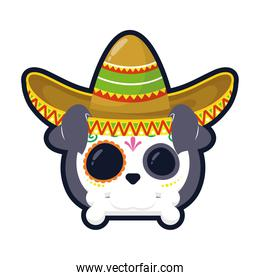 traditional mexican dog skull head with mariachi hat flat style icon