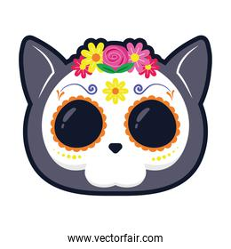 traditional mexican cat skull head flat style icon