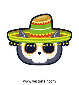 traditional mexican cat skull head with mariachi hat flat style icon