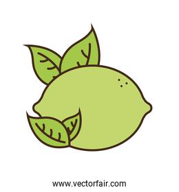 lemon with leaves fruit line and fill style icon vector design