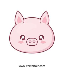 Kawaii pig animal cartoon vector design