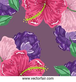 hibiscus flowers and leaves nature decoration background