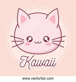 Kawaii cat animal cartoon vector design